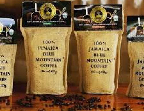 100% Jamaica Blue Mountain Coffee – Roasted Ground and /or Beams in various size. Produced by Stone Leigh Jamaica